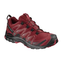 Salomon Shoes XA Pro 3D Gtx RD Dahlia/BK/Barbado 2018L40472200