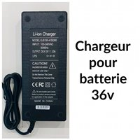E-TWOW Chargeur 36V 3Ah pour Booster S+, S, Booster V et MONSTER 2018