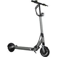 Egret Electric Scooter Eight V2 Gray 2019